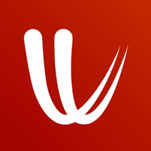logo der windy app